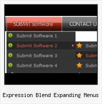 Wpf Button Style Expression Design Expression Web 3 3 Column Templates